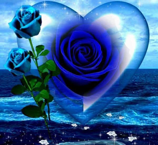 bonjour mon amie martiniquaiz mercie beaucoup pour ce magnifique cadeau surtout avec la rose j'adore beaucoup les fleurs mais je ne peu pas en avoir car je fait de l'asthme et je suis allergique au fleurs mercie beaucoup pour c'est magnifique commentaires et je te fais tout plein de gros bisous