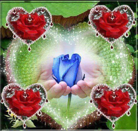 bonjour mon amie sylvie166,comme vas tu en ce samedi car en ce moment il fait très froid et il pleut et mercie du fond du coeur pour c est magnifique commentaire qui me fais très plaisir au coeur et voici un magnifique cadeau pour toi et je te fais tout plein de gros bisous du coeur ton amie gisèle car l amitiè c est très sacrè pour moi dans mon coeur