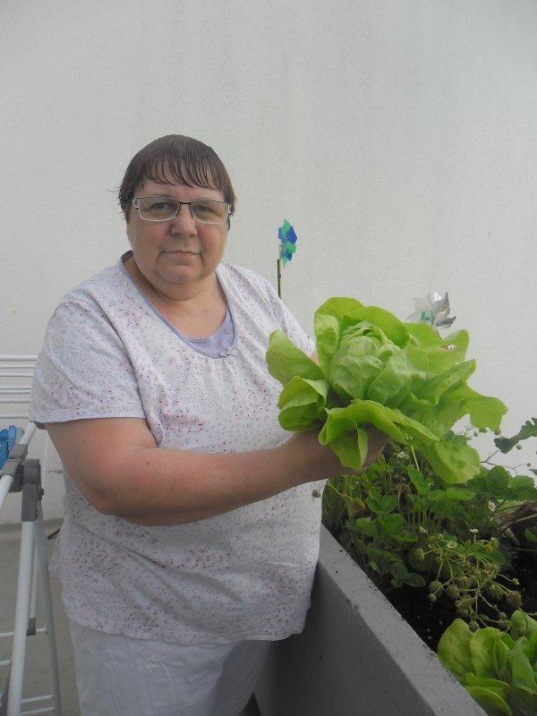 Bonjour a vous tous je vous mets quelques photos de mon balcon avec ma première salade et mes tomates et aussi mes framboises hummmmmmmmmmmmmmmmmmmmm c'est bon tout ça et je vous souhaitent un très bon week-end