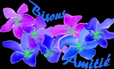 bonsoir a vous tous je vous remercient beaucoup d'ètre là sur mon blog pour me mettre des commentaires et je vous souhaitent une très bonne soirée ainsi qu'une bonne nuit je vous fais tout plein de gros bisous