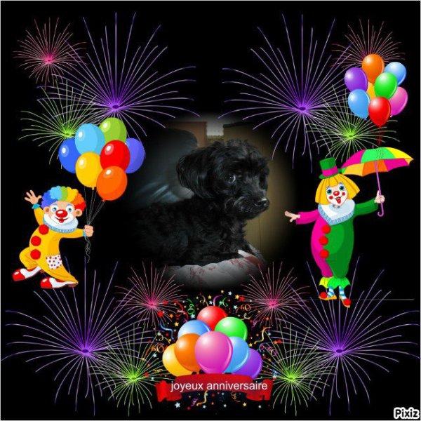 bonjour mon amie amitietendresse226 mercie beaucoup pour féline c'est trop gentil d'avoir pensé a son anniversaire je te souhaite un bon samedi après-midi et je te fait tout plein de gros bisous
