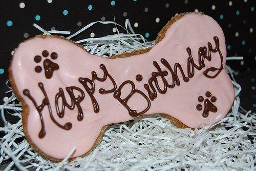 bonjour mon amie jaccat2 oh que c'est gentil d'offrire ce jolie cadeau pour féline pour son anniversaire un grand mercie pour tout car c'est très gentil de penser a ma petite chienne féline je te souhaite une bonne fin d'après-midi et je t'envoie tout plein de gros bisous