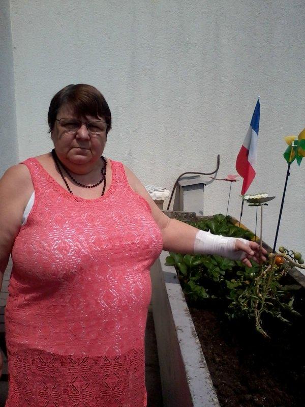 bonsoir a vous tous je vous mets deux photos de mon balcon avec les premières tomates je vous souhaitent une très bonne soirée ainsi qu'un bon dimanche ensoleilé et je vous fais tout plein de gros bisous