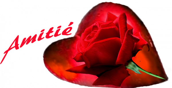 bonsoir j ai reçu un magnifique cadeau par mon amie sylvie166 et mercie du fond du coeur et je te souhaite une très belle soirèe et aussi une bonne nuit et je te fais tout plein de gros bisous du coeur ton amie gigidu8080 car l amitiè c est très sacrè pour moi dans mon coeur