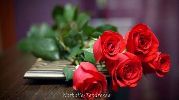 bonjour mon amie Nathalie-Tendresse un grand mercie pour c'est magnifique cadeaux qui me tiens chaud au coeur  je te souhaite une très belle après-midi sous le soleil en ce vendredi et oui qu'es ce qu'il fait encore chaud je t'envoie tout plein de gros bisous