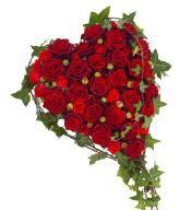 bonjour a vous tous et j espère que vous allez bien car nous ont vas bien et voici un magnifique cadeaux pour vous tous et je vous souhaitent un très bon week-end et aussi une belle journèe en ce samedi et je vous fais tout plein de gros bisous votre amie gigidu8080 car je vous offrent tout mon amitiè en vers vous tous