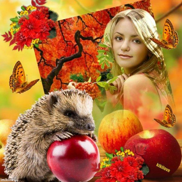 Bonjour à l'automne une belle saison