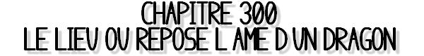 Chapitre 300