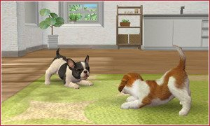 Nintendogs + Cats Golden Retriever & ses amis