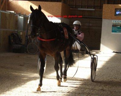 Laval - Mardi 1 novembre 2011