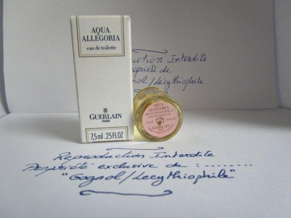 AQUA ALLEGORIA PAMPLELUNE - HERBA FRESCA - LAVANDE VELOUR - ROSA MAGNIFICA - YLANG ET VANILLE