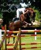 x-chevaux-damOur