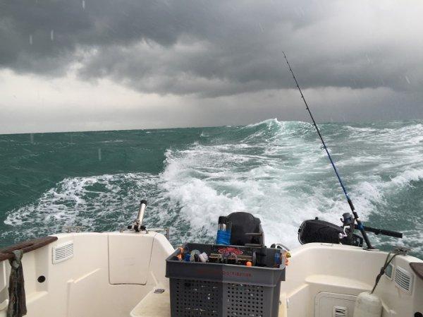 Pêche en bateau sur épave à Dunkerque (17/01/2015)