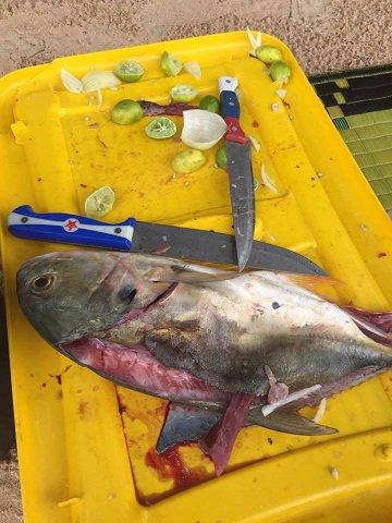 Pêche aux Bijagos - Guinee Bissau - Kasa Afrikana (juin 2016)