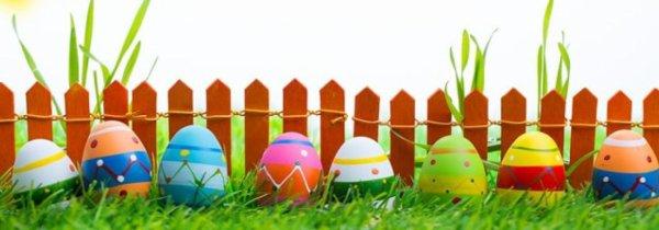 Bonne pâque à tous !!!