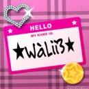 Photo de walies