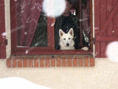 cool encore de la neige !! :)