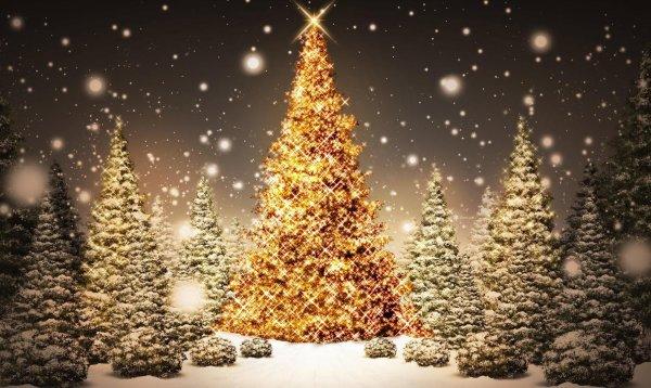 Une très belle journée du 24 décembre