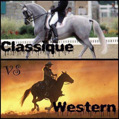 L'équitation, plus qu'un sport, une  passion