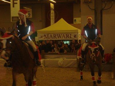 Salon du cheval paris galop theding for Salon du cheval a paris