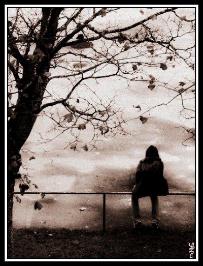 «  Memories  »