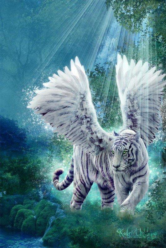Ma passion...Le tigre....