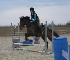 Ma reprise d'équitation du 06/10/2012