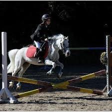 Mon stage d'équitation du 02/11/2012