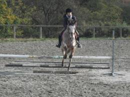 Mon stage d'équitation du 08/11/2012