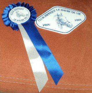 Concours de CSO au club 20.10.2013