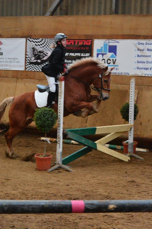 Concours de CSO à la Roche sur Yon - Dimanche 12 janvier 2014
