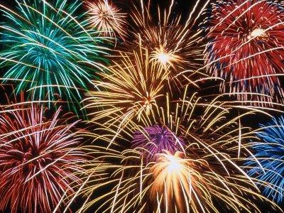 De beste wensen en een gezond en vogelrijk 2012 !!!