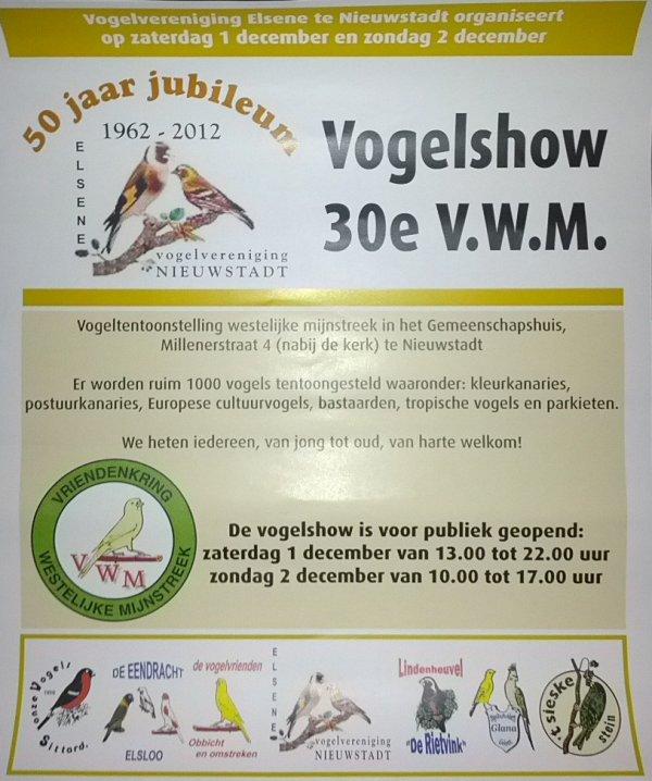 VV Elsene 50 Jaar