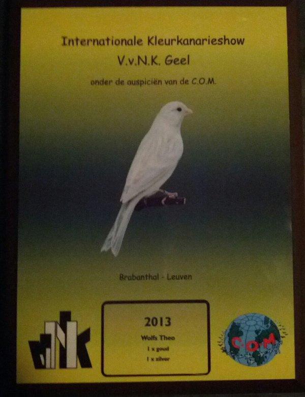 Uitslag VVNK Leuven