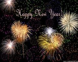fijne jaarwisseling en een gezond en vogelrijk 2014  &  bonne année