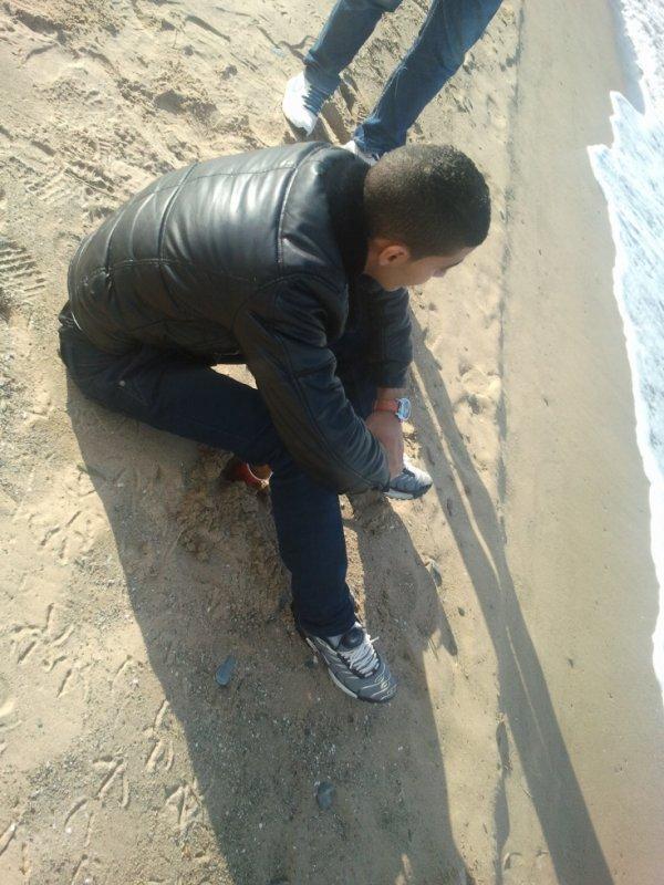 """Les Andalouses plage """" Janvier 2012 """""""
