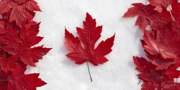 Canada ♥ Insha'allah
