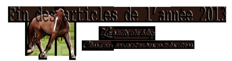 """"""" Fin des News 2013 """""""