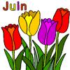 L'almanach du mois de Juin