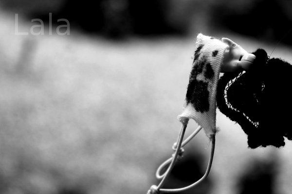 Photo coup de coeur