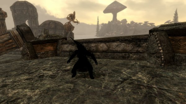 I believe I can steal,  I believe I can kill (skyrim). My name is Lisbonna.