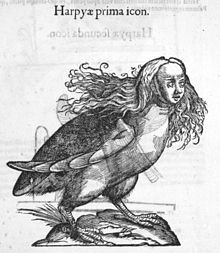 Créatures fantastiques, mythiques et imaginaires n°3 : Les harpies