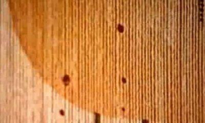 Phénomènes paranormaux et étranges n°2 ; La maison qui saigne de St Quentin