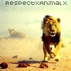 RespectxAnimalx