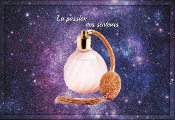 Vente d'équivalence de parfums de grandes marques