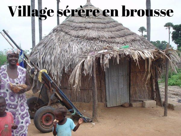 Circuit Sénégal pas cher avec Yerim Guide Tours .Voir mon site web www.guide-senegal.mozello.com
