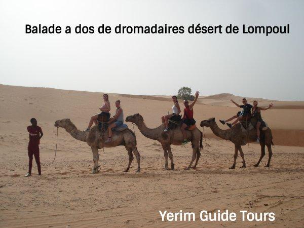 Découvrez le Sénégal autrement avec Yerim Guide Tours .www.guide-senegal.mozello.com