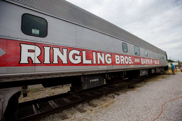 Après la cessation d'activité de l'enseigne, des anciens wagons du cirque Ringling Bros Barnum and Bailey Circus ont été rachetés par un couple de collectionneurs. La fin de toute une époque... :-(