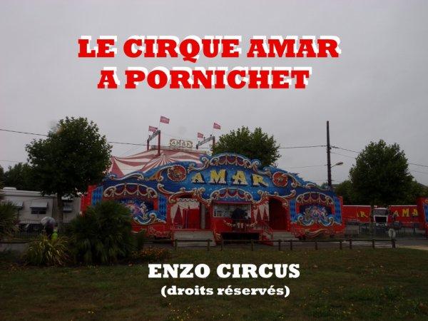 Les photos de l'arrivée des convois du cirque Amar à Pornichet (44). Désolé pour la qualité des photos, mais la météo ce jour là était excécrable. Bonne visite...