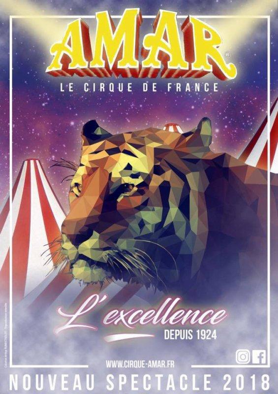 L'ébauche de l'affiche du cirque Amar 2018 !! L'excellence